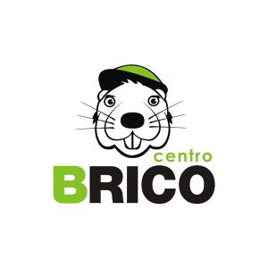 Logo identity Centro Brico